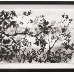 scenic I, Tusche auf Japanpapier, 23x34 cm, 2018