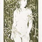 Bambus, Radierung auf Büttenpapier, 28x54,5 cm, 2019